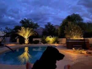 Arizonia poolside view