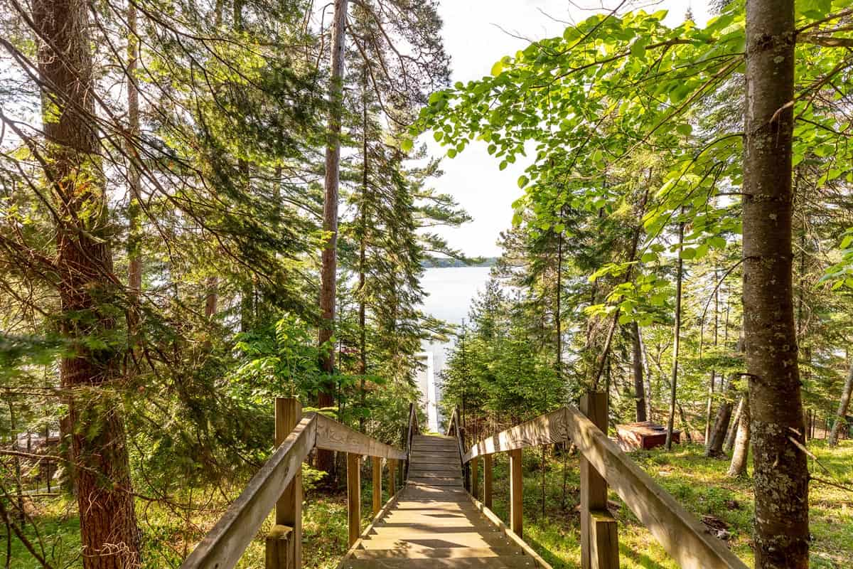 Big Trout Lake Rustic Cabin staircase
